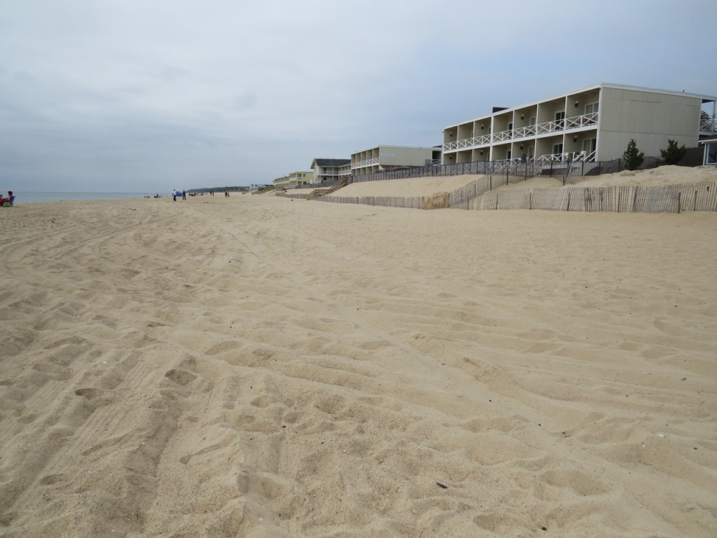 """""""Spring"""" high tides reach the snow fencing in front of these motels. The natural dune line would be located where the motels now sit. An artificial dune constructed seaward of these motels would be located in the intertidal zone."""
