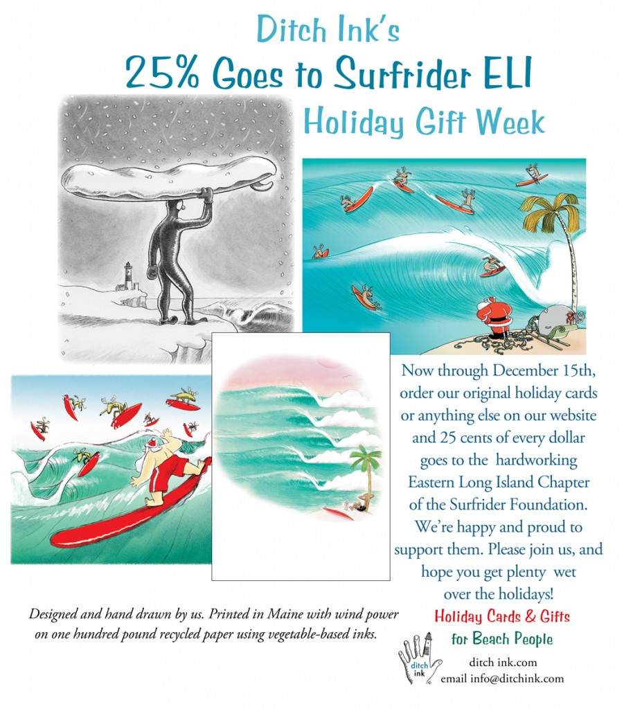 holiday Surfrider mailerWeb