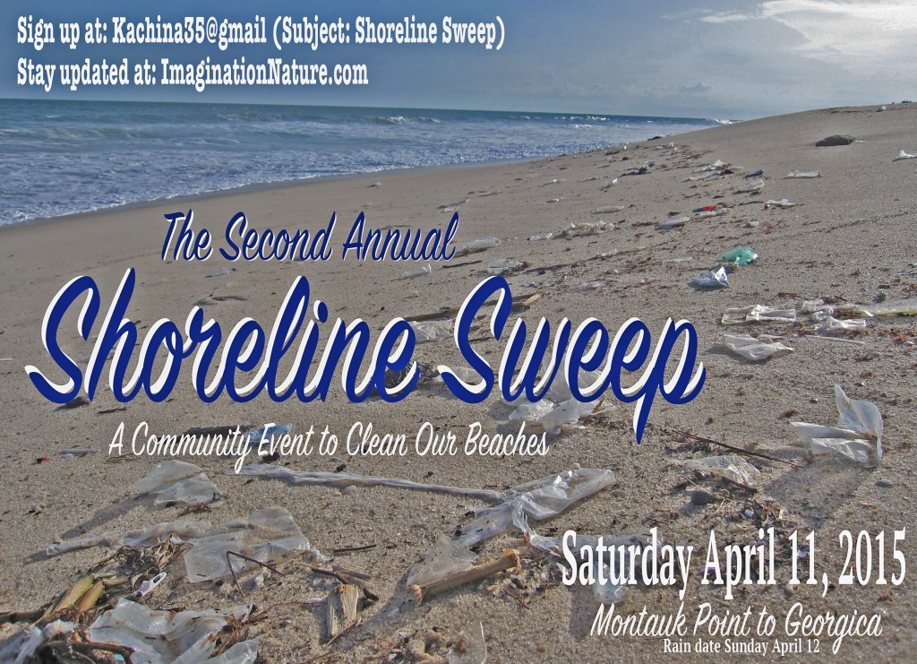 2015 Shoreline Sweep Poster