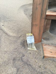 Water Sample from Surfside