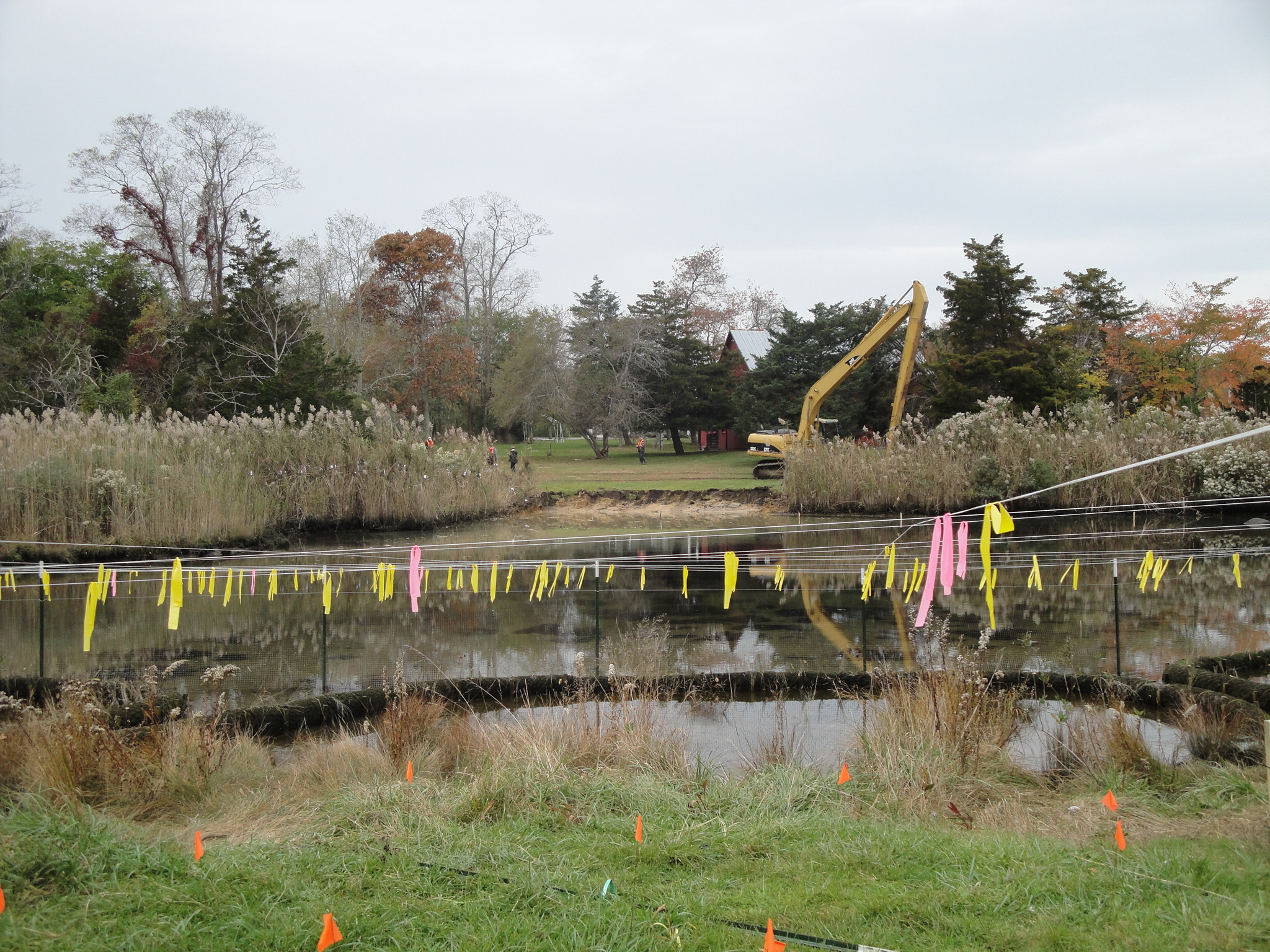 Habitat restoration on one end, removal of invasive plants on the other end.