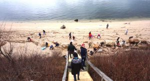 1,100 Pounds of Debris Removed from 67 Steps Beach, Greenport